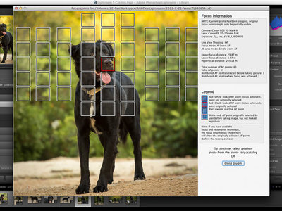 Focus Point Viewer para Lightroom es un plug-in que indica el punto exacto de enfoque en cada foto