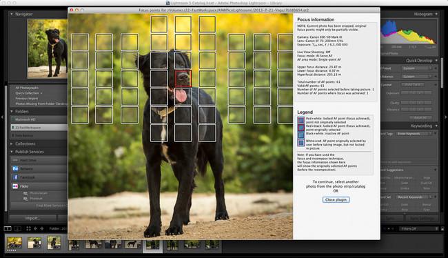 Focus Point Viewer para Lightroom es un plug-in que indica el punto exacto de enfoque en cada foto