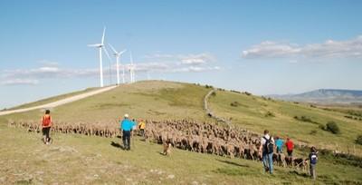 Vive en familia la aventura de ser pastor en Soria
