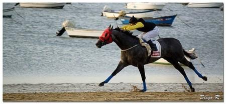 Las carreras de caballos en Sanlúcar de Barrameda del 16 al 18 de agosto de 2013