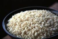La ruta del arroz en Uruguay