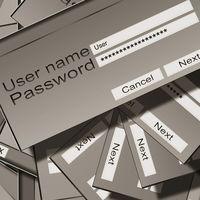 El 80% de los usuarios dicen preocuparse por la seguridad de sus contraseñas… pero la mayoría sigue sin cambiarlas regularmente