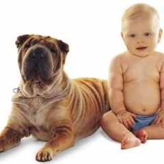 Foto 1 de 4 de la galería perros-y-ninos en Bebés y más