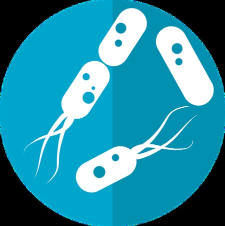 Bacteria Icon 2316230 960 720
