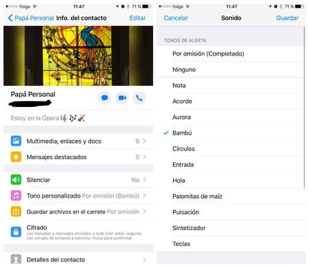 Cambiar tonos de llamadas WhatsApp iOS