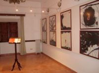 Arte en el Museo Llull