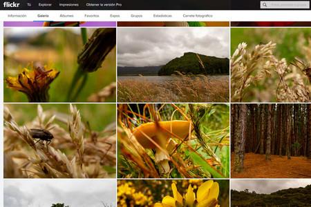 Flickr sigue renovando su interfaz y ahora permite mostrar imágenes a 6K de resolución