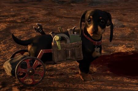 Guía Far Cry 6: cómo conseguir a Chorizo de acompañante