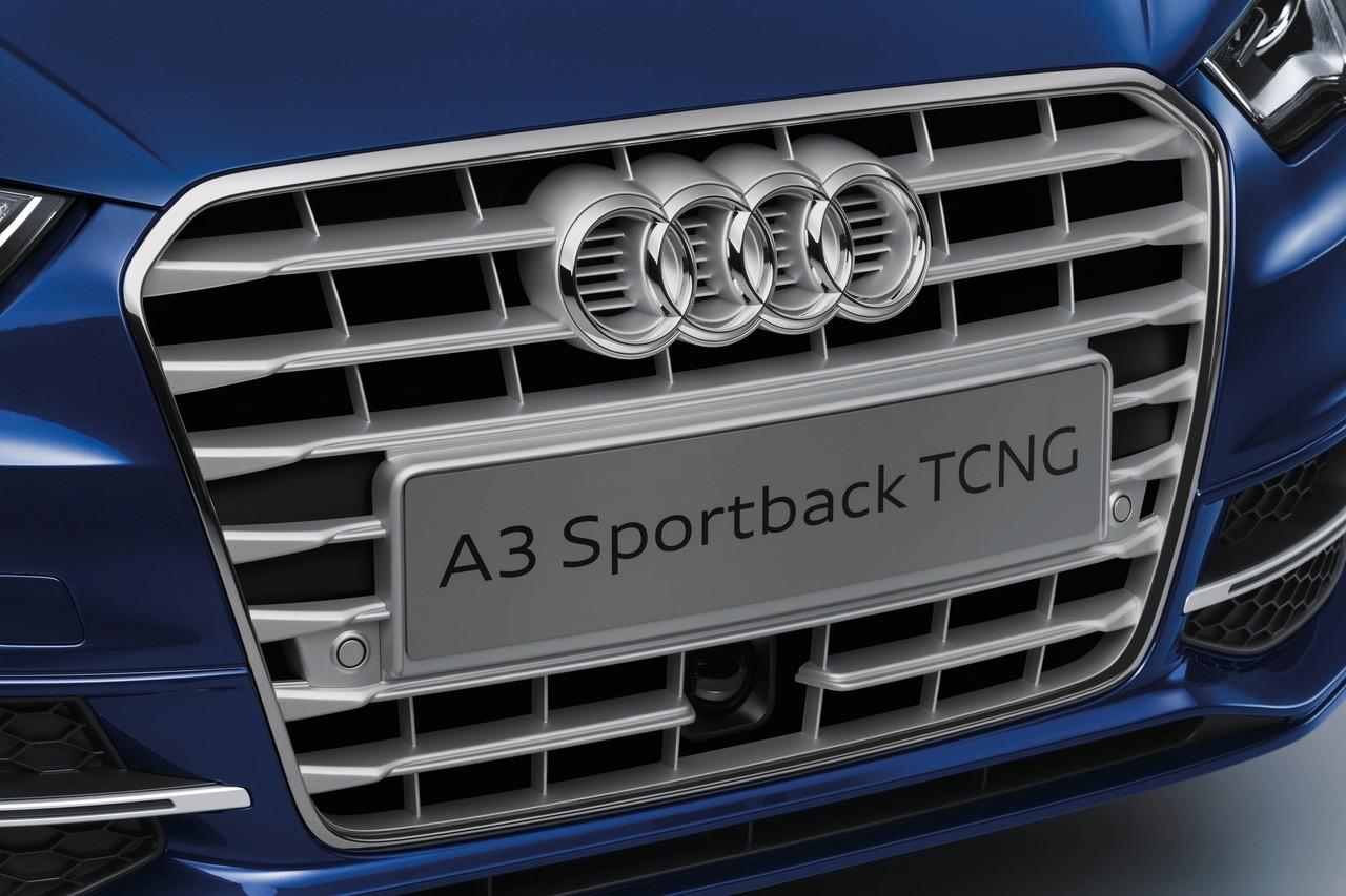 Foto de Audi A3 Sportback 2013 (40/52)