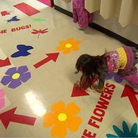 El divertido pasillo sensorial de una escuela en Canadá, que ayuda a los niños a concentrarse mejor en clase