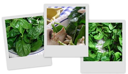 Ensalada de espinacas. Collage