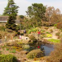 Edimburgo con niños: el Jardín Botánico