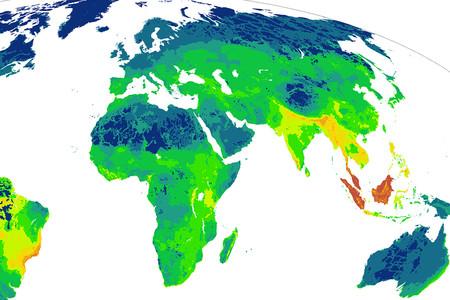 ¿En qué rincones del mundo las especies animales están más amenazadas? Este mapa lo explica