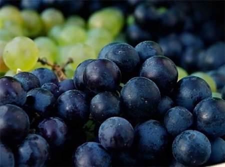 Diferencias entre uva blanca y negra