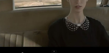 Alana Zimmer canesu diamantes