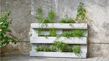 Palets para hacer un jardín vertical