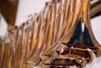 El curadillo, un pescado que conserva muchas propiedades