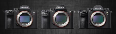 Sony A7r3 A7r2 A9