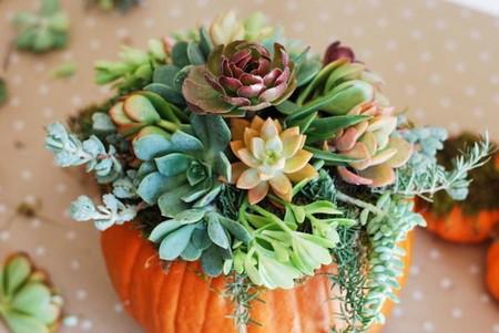 La semana decorativa: calabazas, madera, textiles, tonos tierra... Creando ambientes de otoño