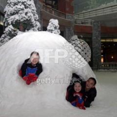 Foto 3 de 8 de la galería ski-dubai-imagenes en Trendencias