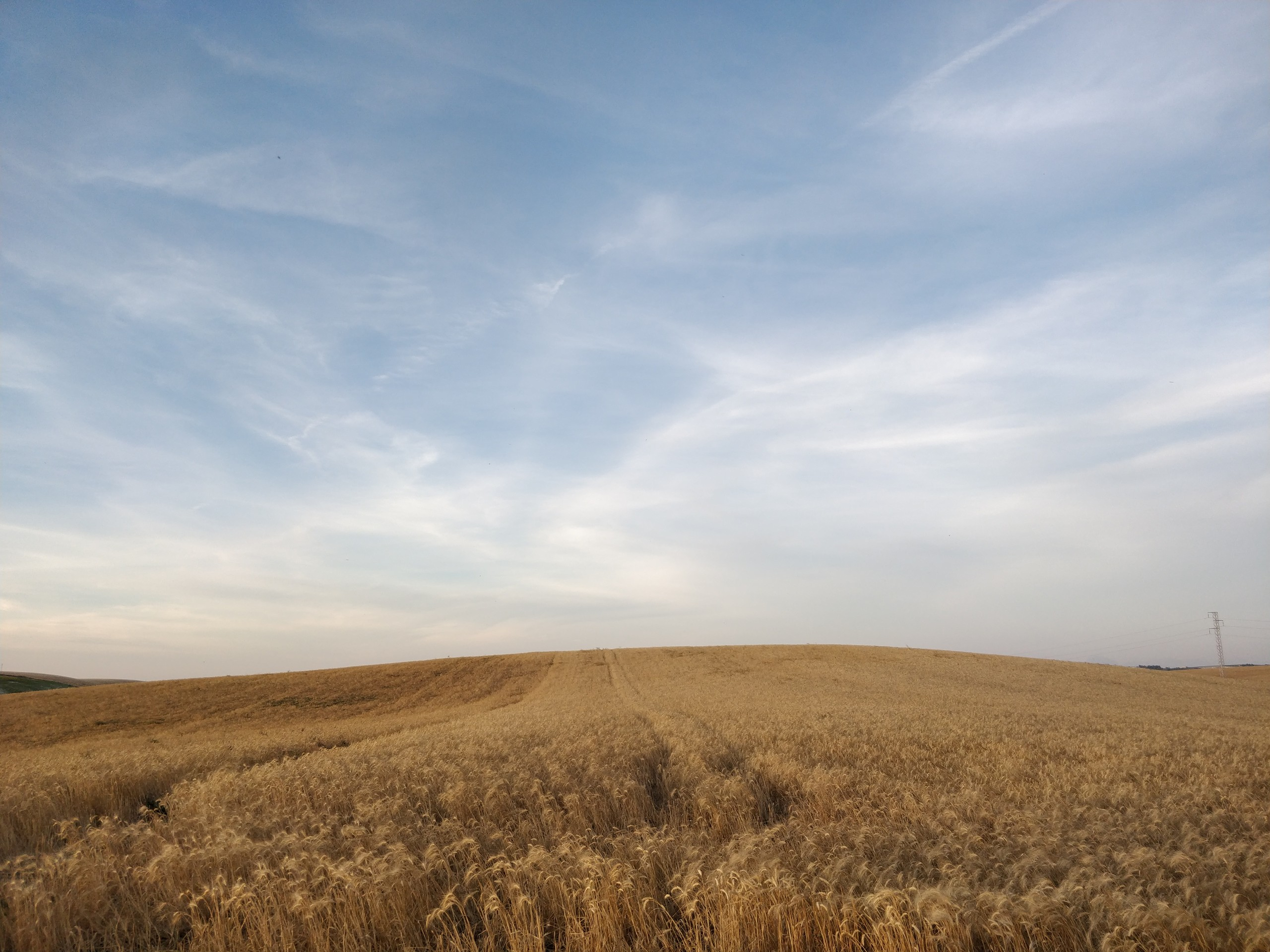Foto de Fotos con OnePlus 5 (14/26)