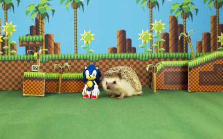 Sonic tendrá un evento especial en julio y finales de septiembre regresa a 3DS con Sonic Boom: Fire & Ice