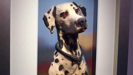 """Casio presenta una tecnología para """"esculpir"""" fotografías de 2D"""