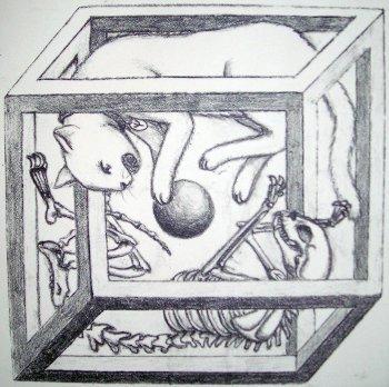 El gato de Schrödinger (y V)