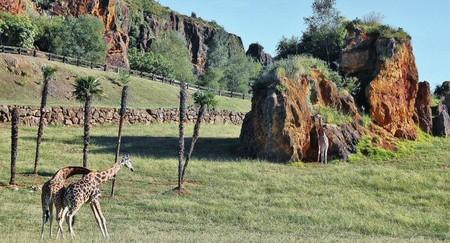 Cantabria Parque Cabarceno