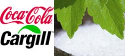 Coca Cola quiere introducir estevia en sus bebidas