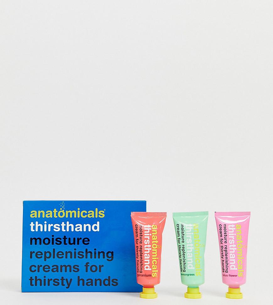 Pack de cremas hidratantes para manos sedientas de Anatomicals