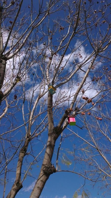 Foto de HTC One X, ejemplo fotos (12/13)