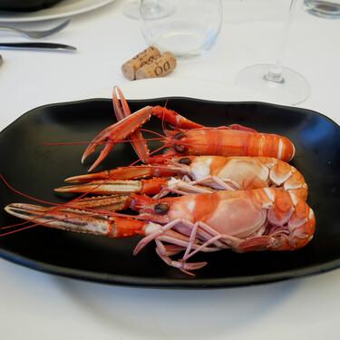 Restaurante Sabino: visitamos en Sanxenxo una de las mecas del marisco gallego, donde no solo brilla el marisco
