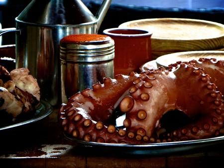 Octopus Pixabay