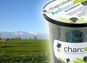 Charcolive, hueso de aceituna carbonizado