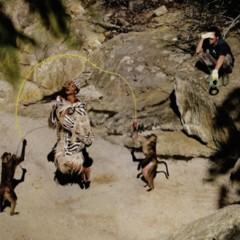 Foto 2 de 4 de la galería el-verdadero-print-animal-editorial-con-naomi-campbell-en-africa en Trendencias