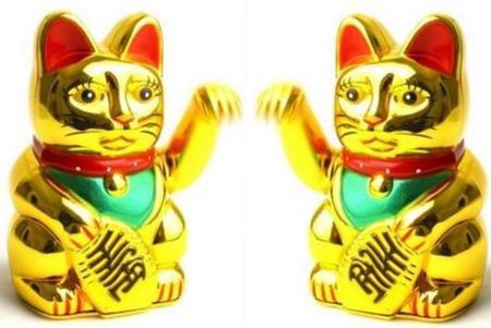 gatos-chinos.jpg