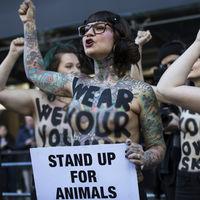 Veganismo protegido por ley: un tribunal británico lo pone al nivel de la religión