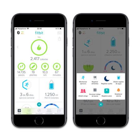 Fitbit App Panel Principal