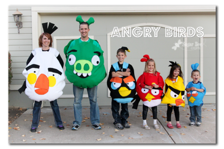 Angry birds disfraz