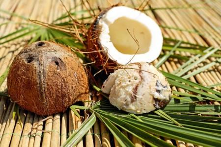 Coconut 1501392 1920