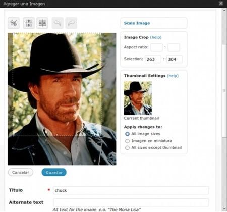 WordPress 2.9 - Editor de imágenes