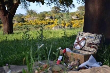 Ruralka propone excursiones de ensueño y cestas de picnic llenas de delicias ¿qué más se puede pedir?
