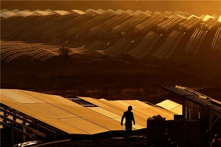 La mayor planta fotovoltaica de Europa está en Badajoz: así es Núñez de Balboa, con 500 MW y más de 1.400.000 paneles solares