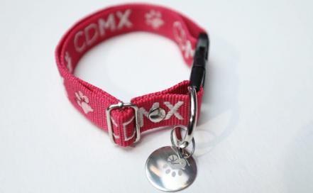 Registro Mascotas Ciudad De Mexico Placa Identificacion