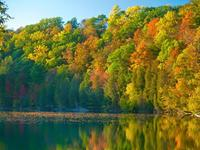 Compañeros de ruta: parques, castillos, lagos y selva