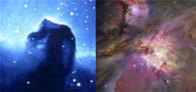 Nebulosa Cabeza de Caballo y Gran Nebulosa de Orion