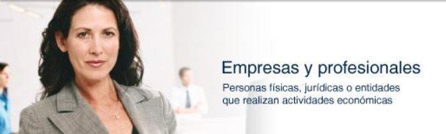 empresas-y-profesionales.jpg
