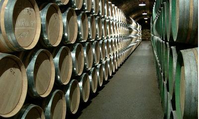 Los secretos del vino llegan al Basque Culinary Center
