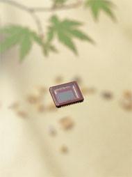 Sensor CMOS de 6 megapíxeles con 60 fps
